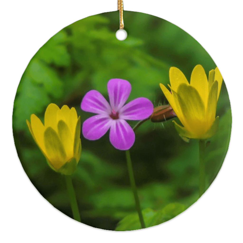 Porcelain Ornaments - Irish Wild Flowers Ornaments Moods of Ireland Round