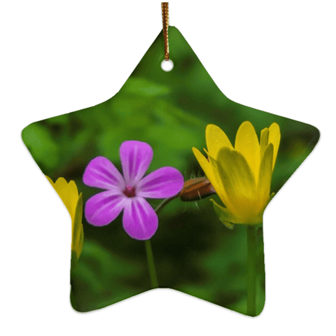Image of Porcelain Ornaments - Irish Wild Flowers Ornaments Moods of Ireland Star