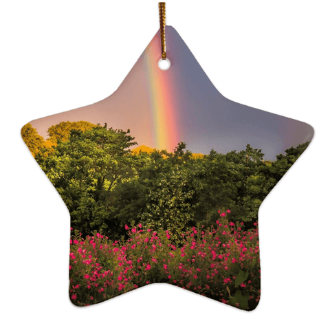Image of Porcelain Ornaments - County Clare Rainbow & Wildflowers Ornaments Moods of Ireland Star