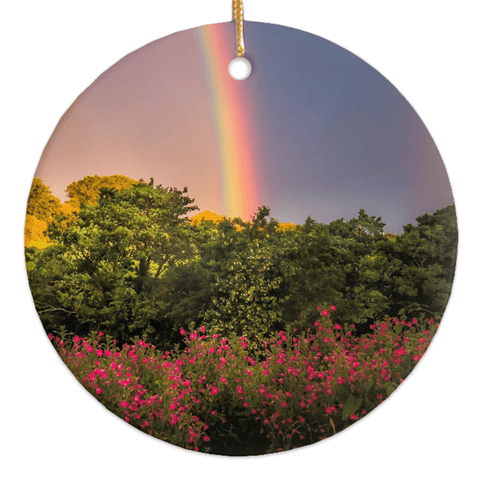 Image of Porcelain Ornaments - County Clare Rainbow & Wildflowers Ornaments Moods of Ireland Round