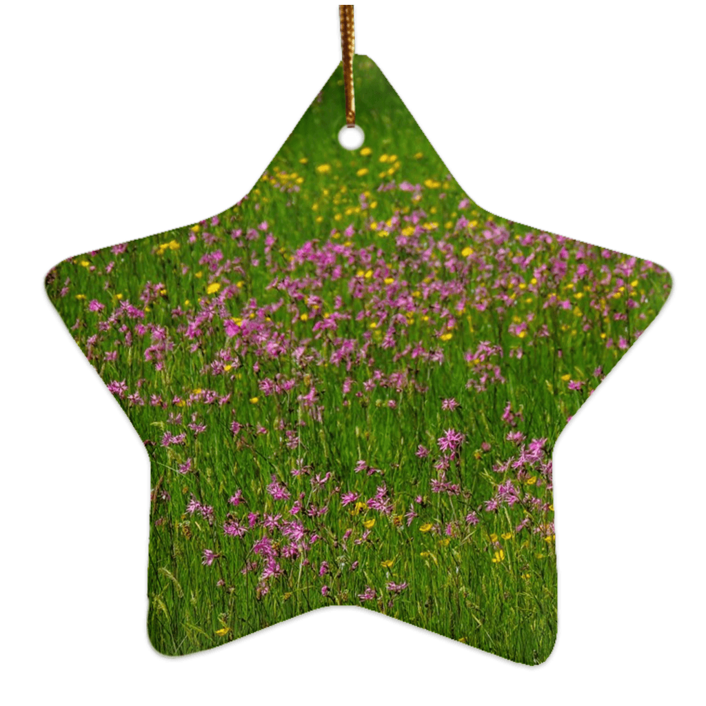 Porcelain Ornament - Wildflowers in an Irish Meadow Ornament Moods of Ireland Star