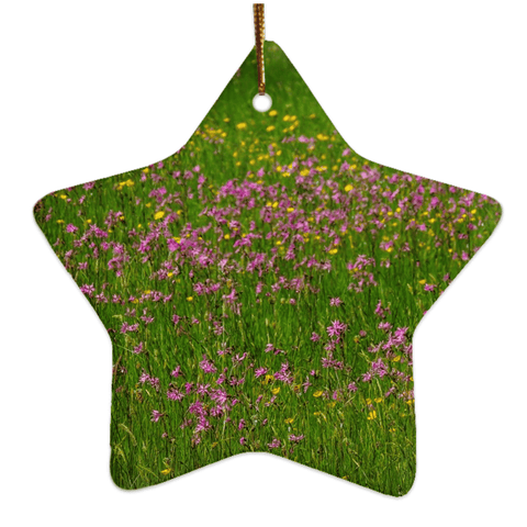 Image of Porcelain Ornament - Wildflowers in an Irish Meadow Ornament Moods of Ireland Star