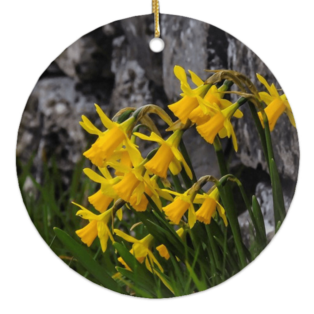 Porcelain Ornament - Irish Spring Daffodils ornaments Moods of Ireland Round