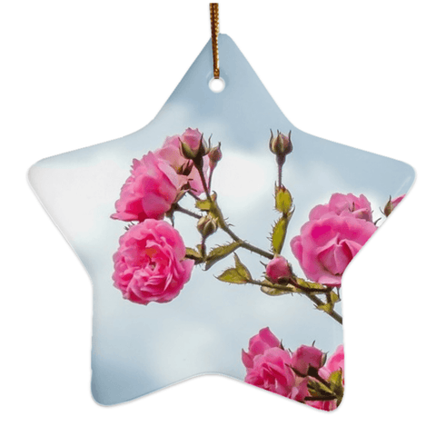 Image of Porcelain Ornament - Wild Irish Roses Ornaments Moods of Ireland Star