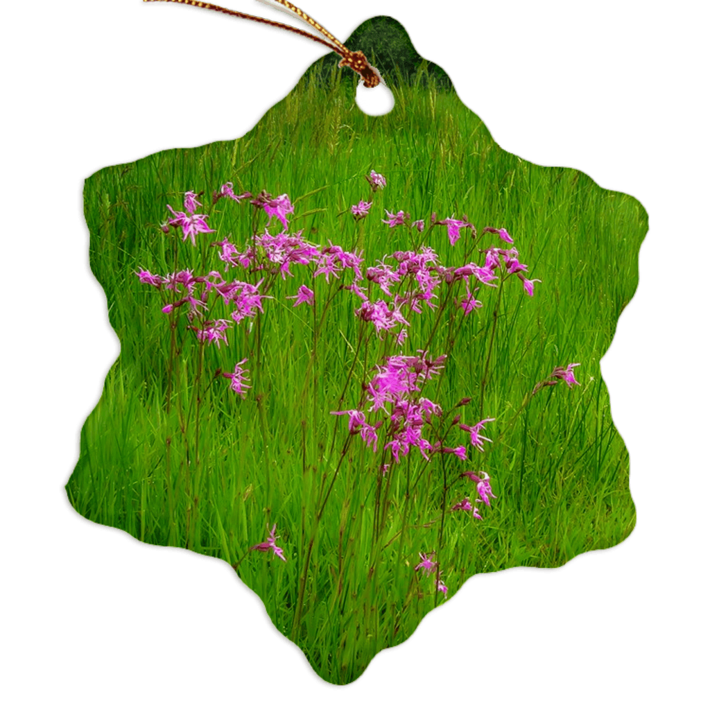 Porcelain Ornament - Ragged Robin in a County Kerry Meadow Ornament Moods of Ireland Snowflake