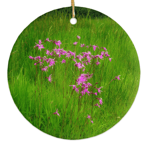 Image of Porcelain Ornament - Ragged Robin in a County Kerry Meadow Ornament Moods of Ireland Round