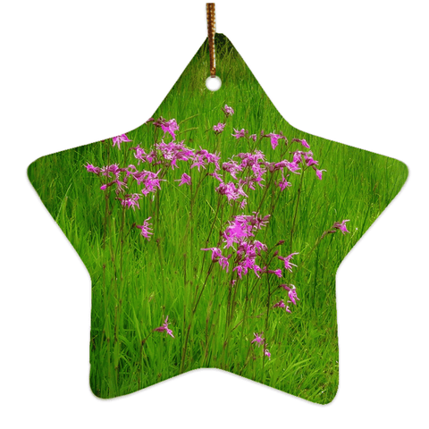 Image of Porcelain Ornament - Ragged Robin in a County Kerry Meadow Ornament Moods of Ireland Star
