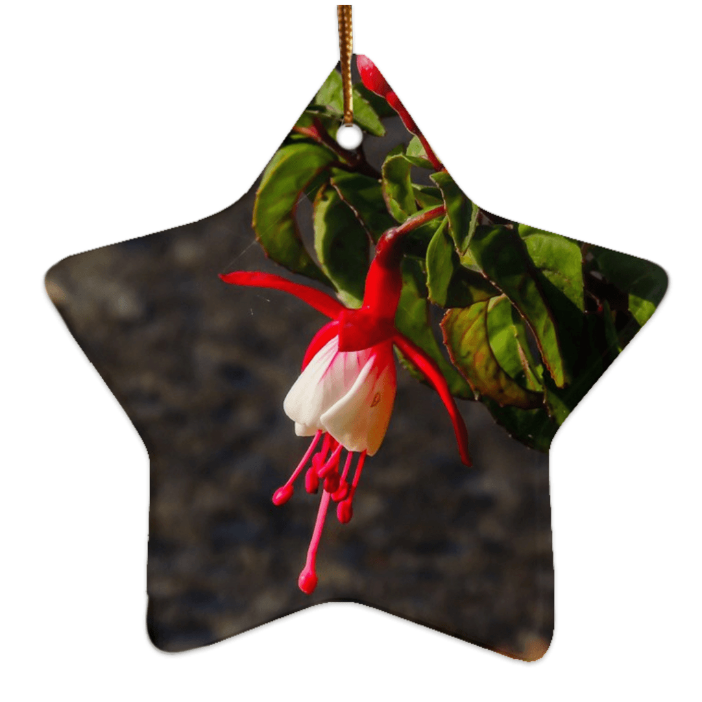 Porcelain Ornament - Fuchsias in the Irish Countryside Ornament Moods of Ireland Star