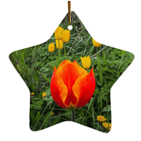 Image of Porcelain Ornament - Tulips Along a County Galway Roadside Ornament Moods of Ireland Star