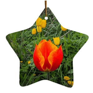 Porcelain Ornament - Tulips Along a County Galway Roadside Ornament Moods of Ireland Star
