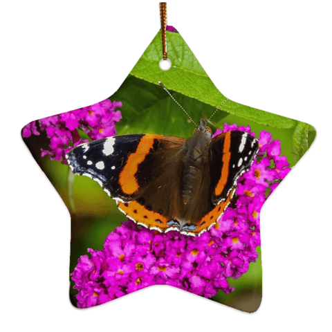 Porcelain Ornament - Butterfly at St. Martin's Well, Ballynacally, County Clare Ornament Moods of Ireland Star