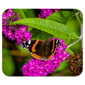 Mousepad - Butterfly at St. Martin's Well, Ballynacally, County Clare Mousepad Moods of Ireland 7.79x9.25 inch