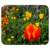 Mousepad - Tulips in County Galway, Ireland Mousepads Moods of Ireland 7.79x9.25 inch