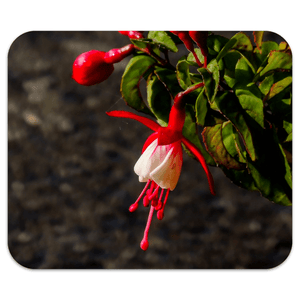 Mousepad - Fuchsias in the Irish Countryside - James A. Truett - Moods of Ireland - Irish Art