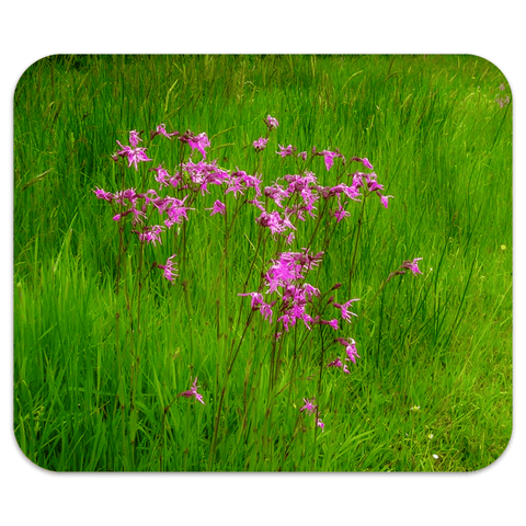 Mousepad - Ragged Robin in a County Kerry Meadow Mousepad Moods of Ireland 7.79x9.25 inch