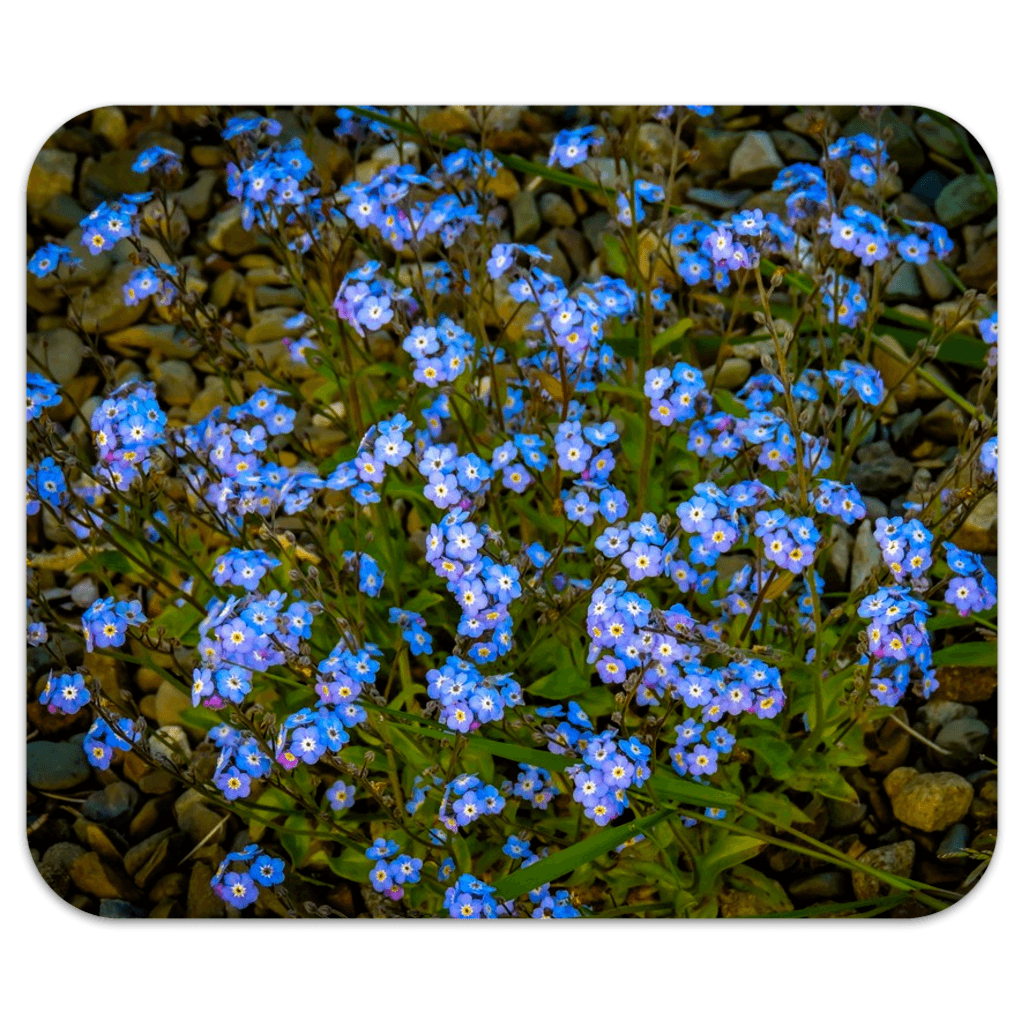 Mousepad - Forget Me Nots Mousepad Moods of Ireland 7.79x9.25 inch