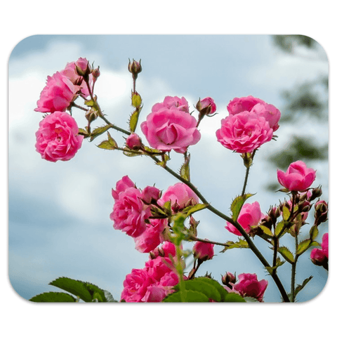 Mousepad - Wild Irish Roses Mousepad Moods of Ireland 7.79x9.25 inch