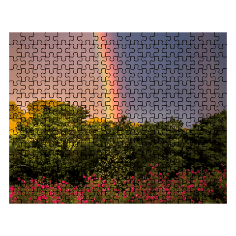 Puzzle - Rainbow and Wildflowers in the County Clare Countryside Puzzle Moods of Ireland 252 Pieces