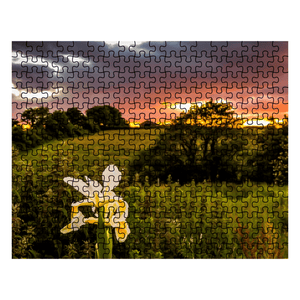 Puzzle - Iris at Sunset in County Clare Puzzle Moods of Ireland 252 Pieces