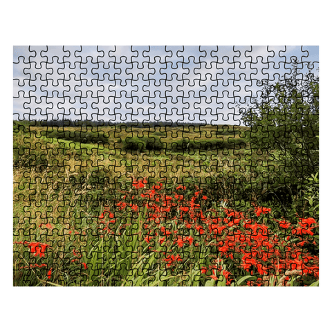 Puzzle - Summer Irish Meadow in County Clare Puzzle Moods of Ireland 252 Pieces