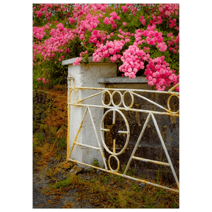 Flat Card - Gate with Irish Roses