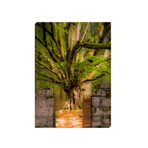 Canvas Wrap - Lady's Tea Garden at Portumna Castle, County Galway Canvas Wrap Moods of Ireland 5x7 inch