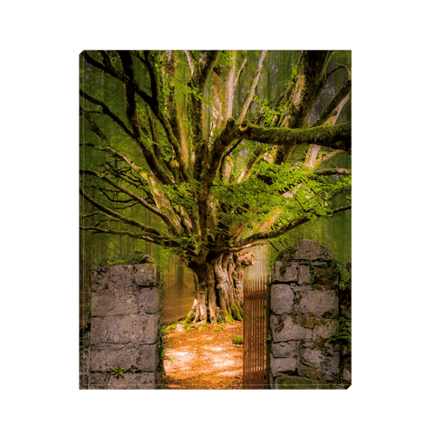 Image of Canvas Wrap - Lady's Tea Garden at Portumna Castle, County Galway Canvas Wrap Moods of Ireland 8x10 inch