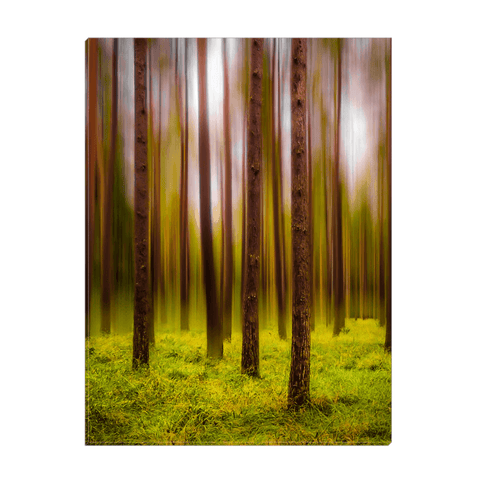 Image of Canvas Wrap - Ethereal Mood in Portumna Forest Park Canvas Wrap Moods of Ireland 12x16 inch