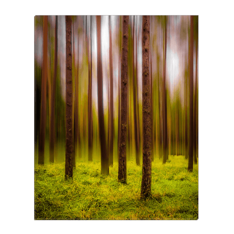 Image of Canvas Wrap - Ethereal Mood in Portumna Forest Park Canvas Wrap Moods of Ireland 16x20 inch