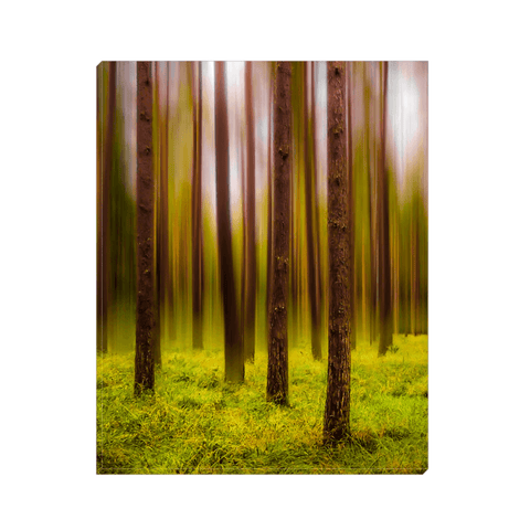Image of Canvas Wrap - Ethereal Mood in Portumna Forest Park Canvas Wrap Moods of Ireland 8x10 inch