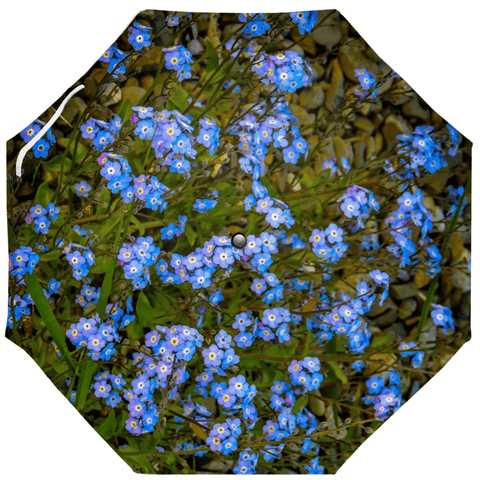 Umbrellas - Irish Forget-Me-Nots Umbrella Moods of Ireland Auto-Foldable Umbrella