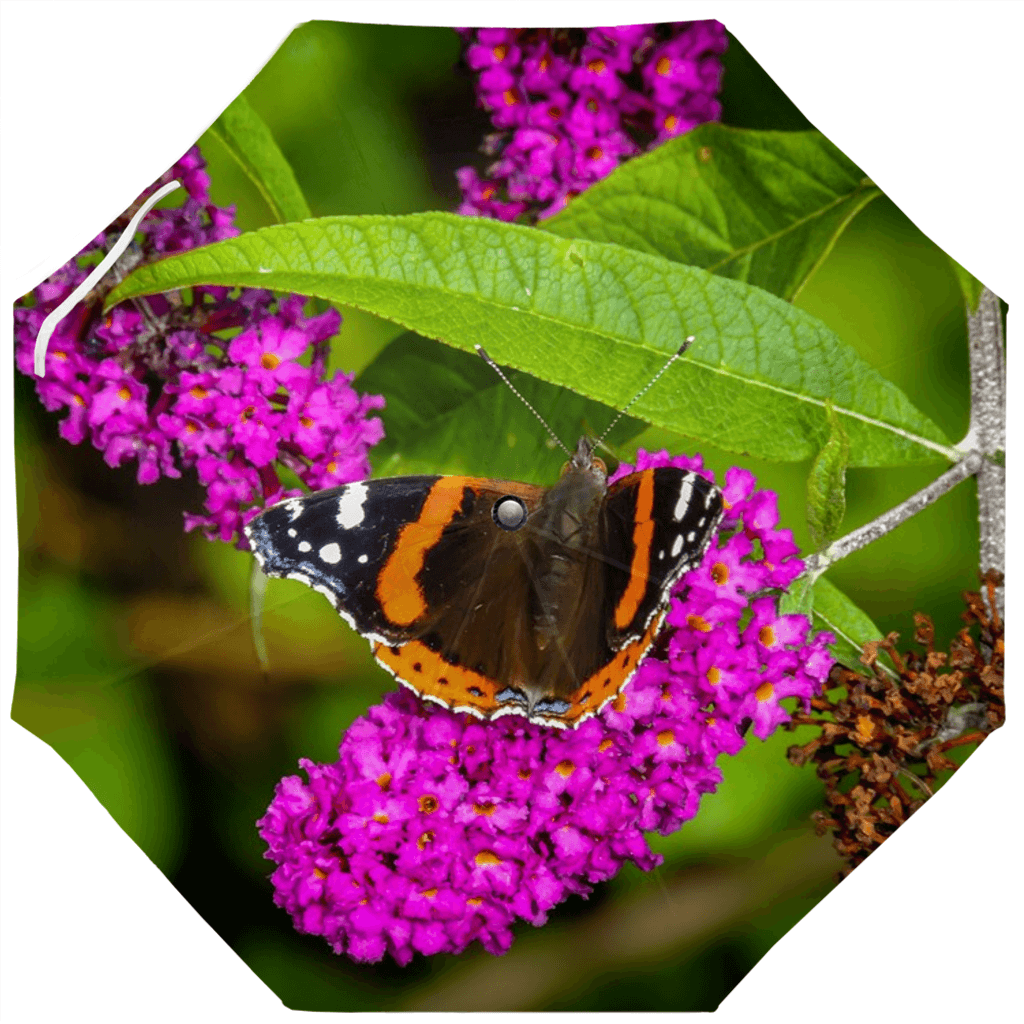 Umbrellas - Butterfly at St. Martin's Well, Ballynacally Umbrella Moods of Ireland Auto-Foldable Umbrella