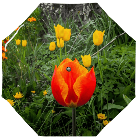 Umbrellas - County Galway Tulips Umbrella Moods of Ireland Auto-Foldable Umbrella