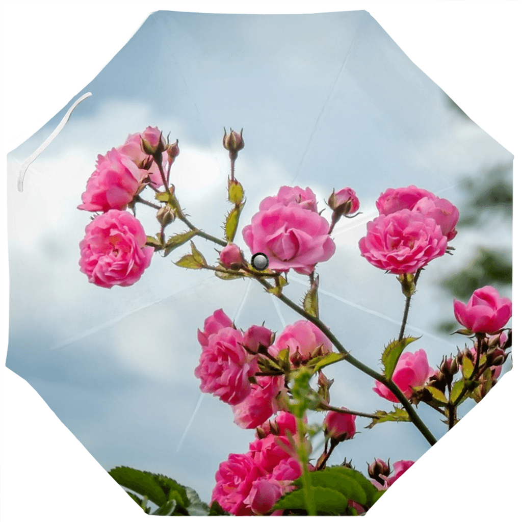 Umbrellas - Wild Irish Roses in County Clare Umbrella Moods of Ireland Auto-Foldable Umbrella