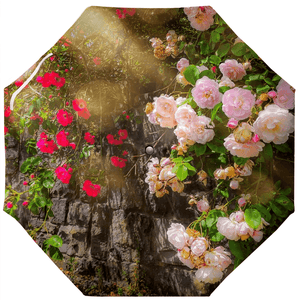 Umbrellas - Irish Roses over Stone Wall