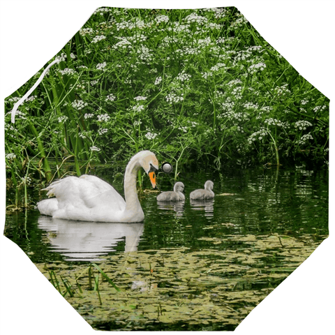 Umbrellas - Swan and Cygnets in Doneraile Park, County Cork, Ireland, Irish Gift Umbrella Moods of Ireland Auto-Foldable Umbrella