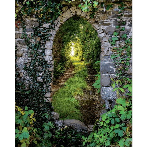 Image of Posters - Tranquil Irish Path in County Clare, Ireland Poster Moods of Ireland 8x10 inch