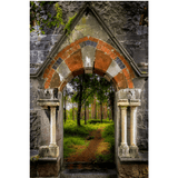 Poster Print - Portal to Portumna Forest, County Galway, Ireland, Irish Wall Art Poster Moods of Ireland 24x36