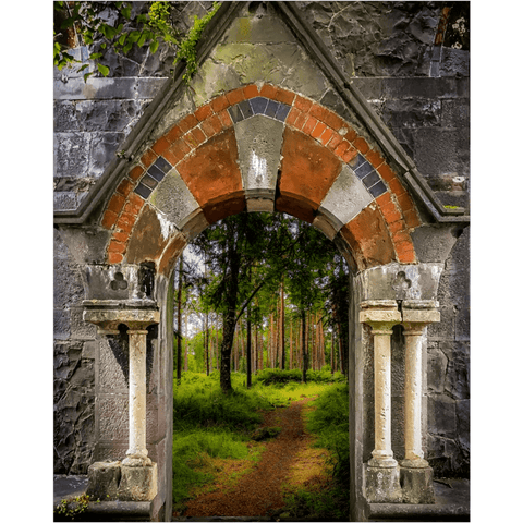 Image of Poster Print - Portal to Portumna Forest, County Galway, Ireland, Irish Wall Art Poster Moods of Ireland 16x20