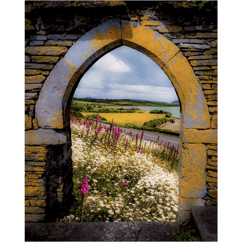 Image of Poster Print - Along the Shannon Estuary, County Clare, Ireland Poster Moods of Ireland 16x20
