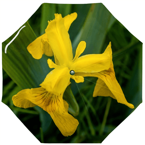 Umbrellas - Wild Irish Flag Iris Umbrella Moods of Ireland Auto-Foldable Umbrella