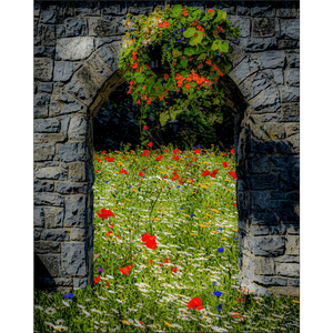 Print - Portal to Secret Irish Wildflower Garden - James A. Truett - Moods of Ireland - Irish Art