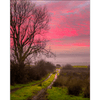 Poster Print - Sunrise over Decomade Meadow, County Clare Poster Print Moods of Ireland 8x10 inch