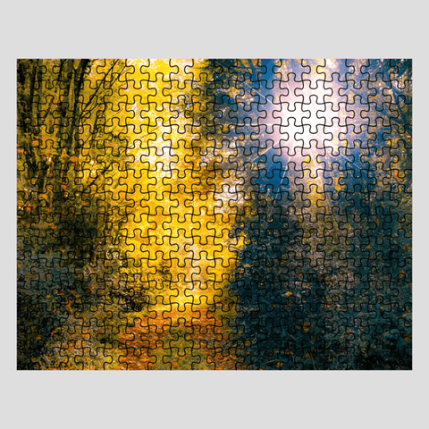 Puzzle - Woodland Path through Paradise, County Clare, Ireland Puzzle Moods of Ireland 252 Pieces