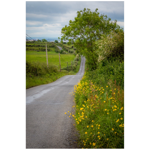 Image of Print - Wildflower-lined Country Road in County Clare - James A. Truett - Moods of Ireland - Irish Art