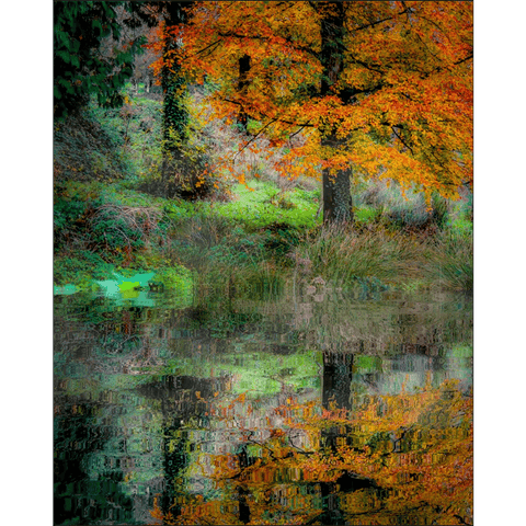 Image of Print - Autumn Reflections in the Irish Countryside Poster Print Moods of Ireland 8x10 inch