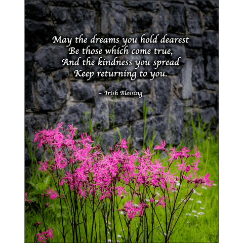 Print - Irish Blessing and Ragged Robin Wildflowers Poster Print Moods of Ireland 8x10 inch