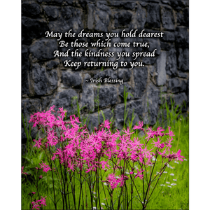 Print - Irish Blessing and Ragged Robin Wildflowers - James A. Truett - Moods of Ireland - Irish Art
