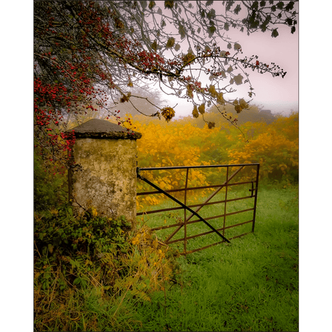 Print - Gate to Misty Irish Autumn in County Clare Poster Print Moods of Ireland 8x10 inch