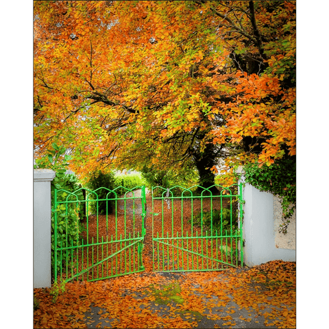 Image of Print - Green Gate in Autumn, County Clare Poster Print Moods of Ireland 8x10 inch